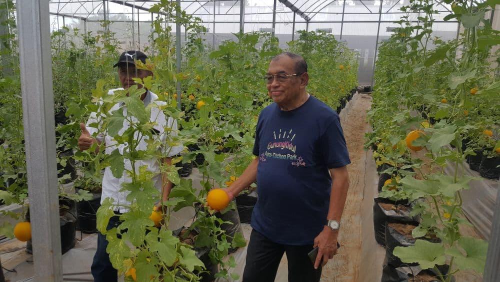 Gunungkidul Agro Technopark (GAT) Sumbermulyo