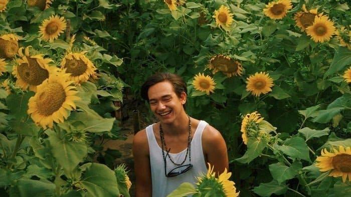 Pantai Samas Sunflower Garden