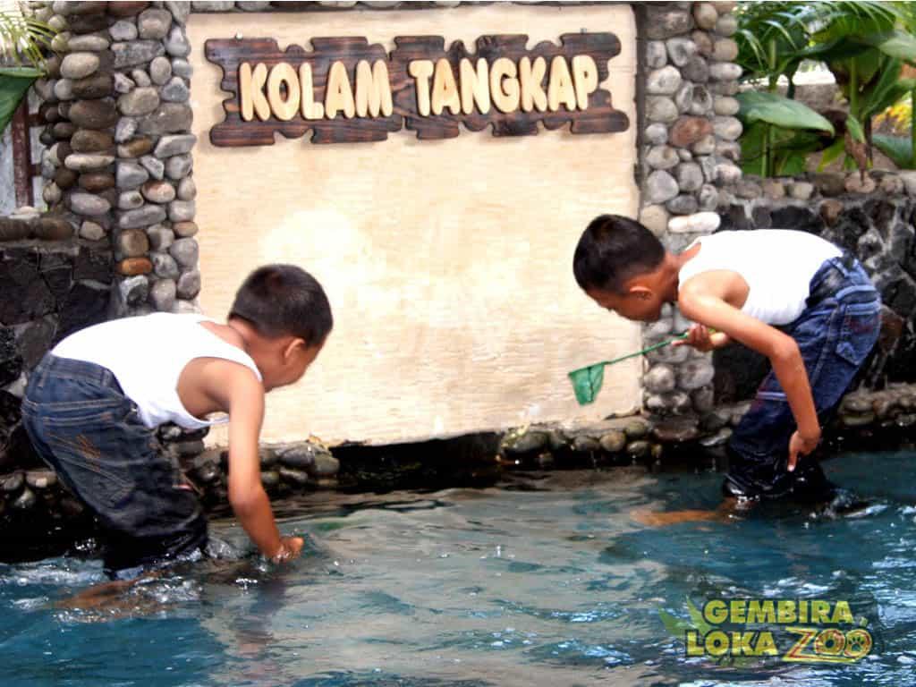 Area Tangkap Ikan