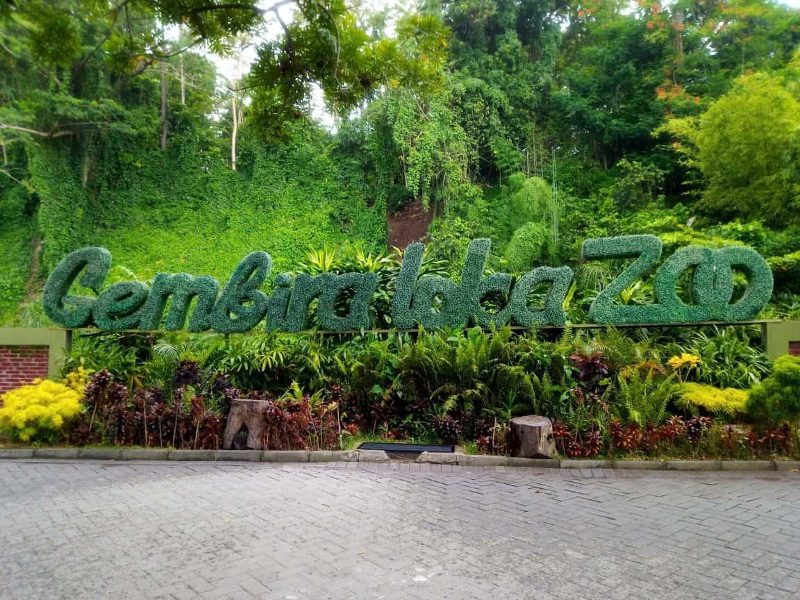 Kebun Binatang (Bonbin) Gembira Loka Jogja, Tak Sekadar Tempat Liburan Semata
