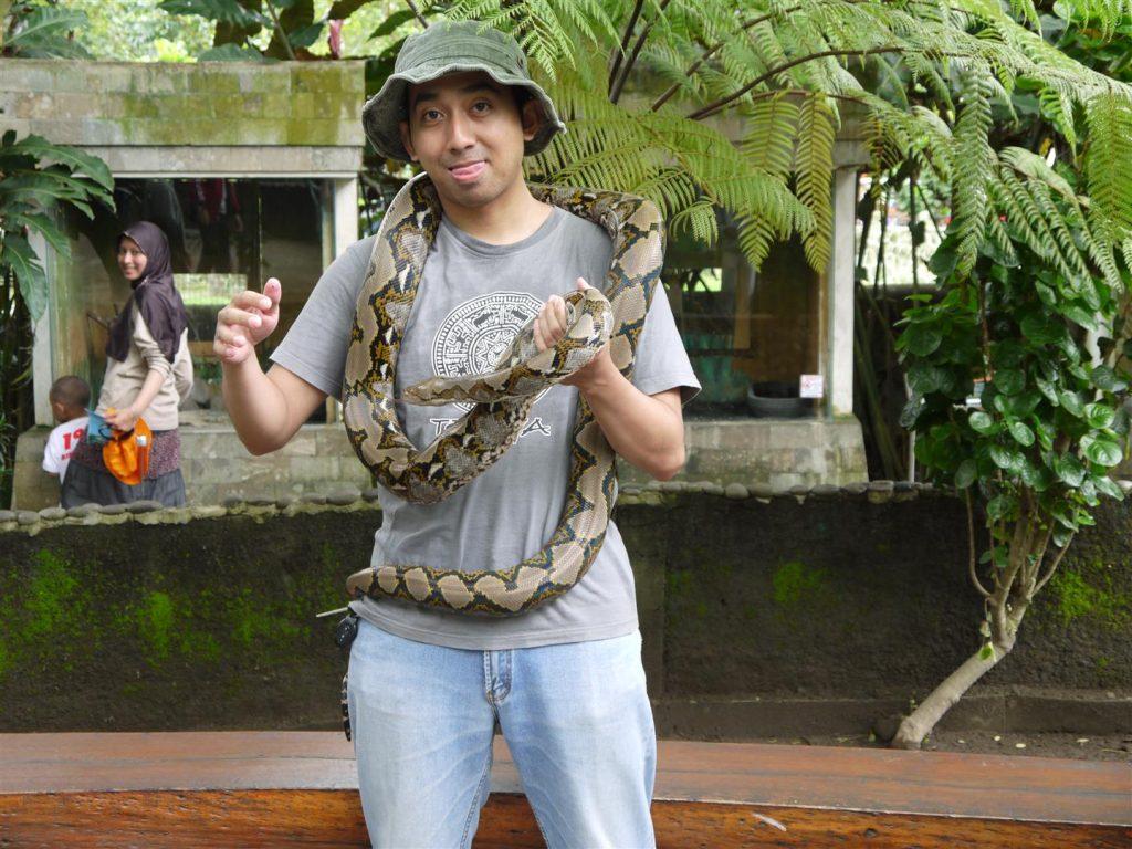 Kegiatan Atraksi Di Wisata Kebun Binatang Gembira Loka