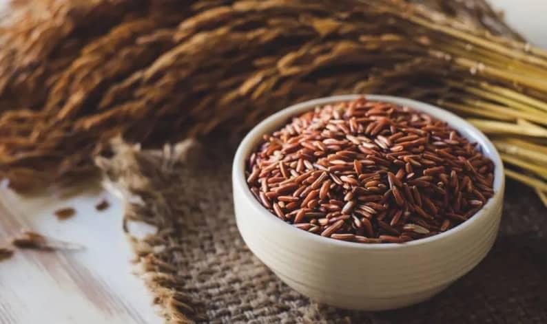 Rekomendasi Jual Beras Merah Organik di Jogja, Untuk Diet Sehat yang Kaya Manfaat